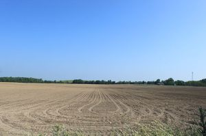 800px-Plowed_Field_East_Morgan_Road_Pittsfield_Township_Michigan