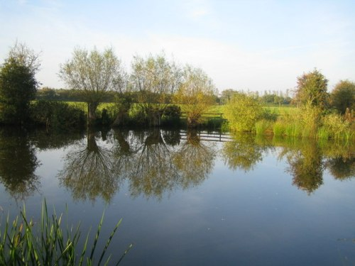 Pond_near_River_Ray_-_geograph.org.uk_-_1266769