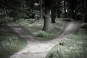 800px-Flickr_-_Laenulfean_-_crossroads