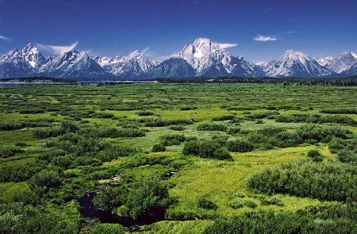 800px-Willow_Flats_area_and_Teton_Range_in_Grand_Teton_National_Park