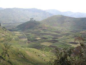 800px-rwanda_-_dense_agriculture
